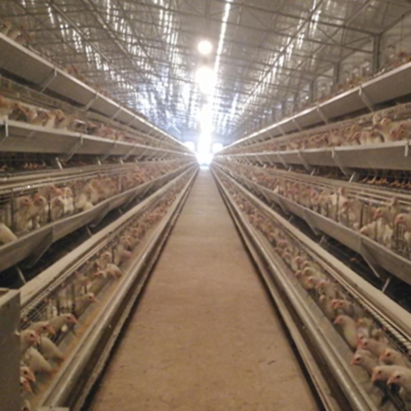畜禽养殖场联网监控解决方案